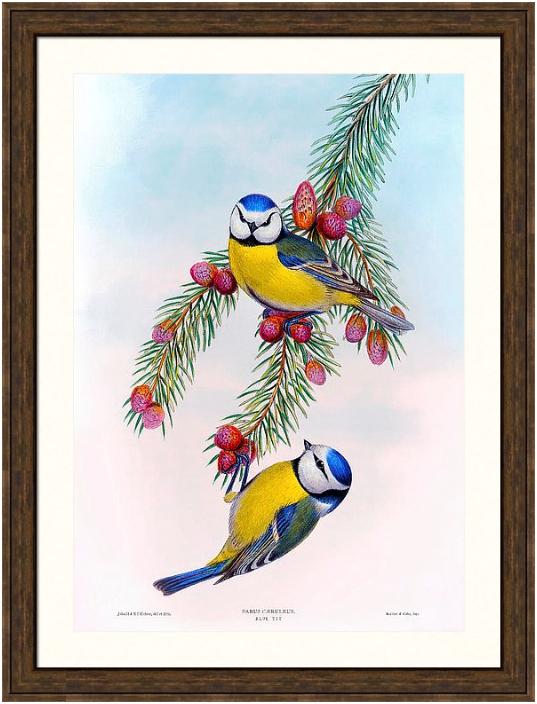 Orchard Arts - The World's Finest Restoration Prints